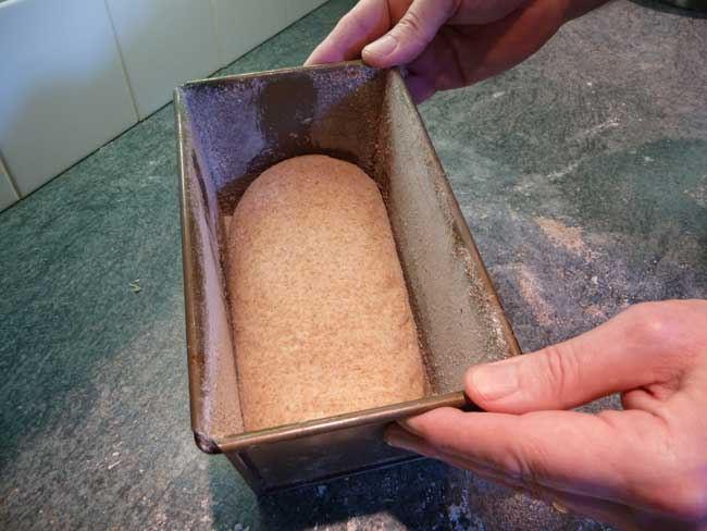 dough in tin