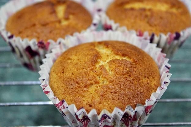 Stevia Cake Recipes Uk: Sweetly Stevia Natural Sweetener Review