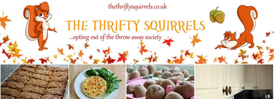 The Thrifty Squirrels